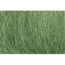 Herbe de champ, vert moyenne 7 g G,0,H0,TT,N,Z G,0,H0,TT,N,Z