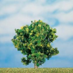 Obstbäume 7 cm